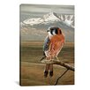 <strong>iCanvasArt</strong> 'American Kestrel' by Ron Parker Painting Print on Canvas