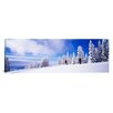 iCanvasArt Panoramic Steamboat Springs, Colorado Photographic Print on Canvas