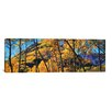 iCanvas Panoramic Maroon Bells, Elk Mountains, Pitkin County Photographic Print on Canvas