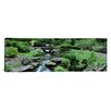 <strong>iCanvasArt</strong> Panoramic River Flowing through a Forest, Inniswood Metro Gardens, Columbus, Ohio Photographic Print on Canvas