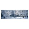 iCanvas Panoramic Winter Forest, Yosemite National Park, California Photographic Print on Canvas