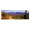 iCanvas Panoramic Golf Course Tucson, Arizona Photographic Print on Canvas