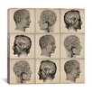 iCanvas Human Head Anatomy Collage Canvas Wall Art