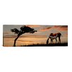 iCanvasArt Panoramic Horse Mare and a Foal Grazing by Tree at Sunset Photographic Print on Canvas