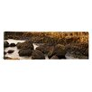iCanvas Panoramic Giant's Causeway, Antrim Coast, Northern Ireland Photographic Print on Canvas