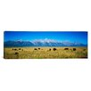 <strong>iCanvasArt</strong> Panoramic Grand Teton National Park, Wyoming Photographic Print on Canvas
