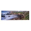 <strong>iCanvasArt</strong> Panoramic 'Elephant Seals on the Beach, San Luis Obispo County, California' Photographic Print on Canvas