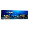 iCanvas Panoramic Hawksbill Turtle, and French Angelfish, with Stoplight Parrotfish Photographic Print on Canvas