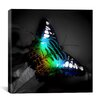 <strong>iCanvasArt</strong> Colorful Butterfly Photographic Canvas Wall Art