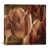 "<strong>iCanvasArt</strong> ""Copper Tulips"" Canvas Wall Art by Mindy Sommers"