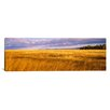 iCanvas Panoramic Crop in a Field, Last Dollar Road, Dallas Divide, Colorado, Photographic Print on Canvas