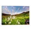 iCanvas 'Columbine Morning ll' by Dan Ballard Photographic Print on Canvas