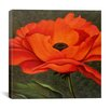 "iCanvas ""Red Poppy"" Canvas Wall Art by John Zaccheo"