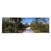 iCanvas Panoramic J.N. Ding Darling National Wildlife Refuge, Indigo Trail, Sanibel Island, Florida Photographic Print on Canvas