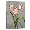 <strong>'Red-Striped Tulips' by John Zaccheo Graphic Art on Canvas</strong> by iCanvasArt