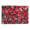 iCanvasArt 'Kaos Red' by Maximilian San Graphic Art on Canvas