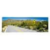 iCanvas Panoramic McCain Loop Road Tucson Mountain Park, Tucson, Arizona Photographic Print on Canvas