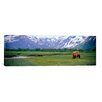iCanvasArt Panoramic Katmai National Park, Kukak Bay, Alaska Photographic Print on Canvas
