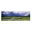 iCanvas Panoramic Katmai National Park, Kukak Bay, Alaska Photographic Print on Canvas