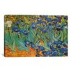 iCanvasArt 'Irises' by Vincent Van Gogh Painting Print on Canvas