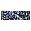 iCanvas Panoramic Close-up of Pebbles, Sandymouth Beach, Cornwall, England Photographic Print on Canvas