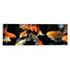 iCanvas Panoramic Koi Carp Swimming Underwater Photographic Print on Canvas