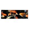 iCanvasArt Panoramic Koi Carp Swimming Underwater Photographic Print on Canvas