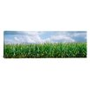 iCanvasArt Panoramic Clouds over a Corn Field, Illinois Photographic Print on Canvas