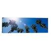 iCanvasArt Panoramic Downtown San Jose, San Jose, California Photographic Print on Canvas