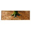 iCanvasArt Panoramic Low Section View of a Tree Trunk, Berlin, Germany Photographic Print on Canvas
