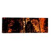 iCanvas Panoramic 'Colorado' Photographic Print on Canvas