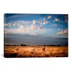 iCanvas Open Spaces by Dan Ballard Photographic Print on Canvas