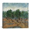 "<strong>iCanvasArt</strong> ""Olive Grove"" Canvas Wall Art by Vincent van Gogh"