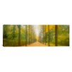 iCanvasArt Panoramic Path Schwetzingen, Germany Photographic Print on Canvas