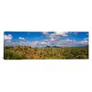 <strong>iCanvasArt</strong> Panoramic Saguaro National Park, Tucson,  Arizona Photographic Print on Canvas