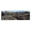 iCanvas Panoramic Marine Iguana on Volcanic Rock on Isabela Island, Galapagos Islands, Ecuador Photographic Print on Canvas