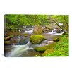 iCanvasArt 'Little River Rapids' by Bob Rouse Graphic Art on Canvas