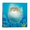 "iCanvas ""Puffer Fish"" Canvas Wall Art by Durwood Coffey"