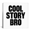 iCanvas Modern Art Cool Story Bro Graphic Art on Canvas