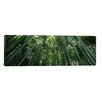 iCanvas Panoramic Arashiyama, Honshu, Japan Photographic Print on Canvas