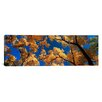 iCanvas Panoramic Canyon de Chelly, Arizona Photographic Print on Canvas