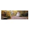 iCanvas Panoramic Stowe, Lamoille County, Vermont Photographic Print on Canvas