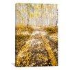 iCanvasArt Road To Fall by Dan Ballard Photographic Print on Canvas