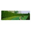 iCanvasArt Panoramic Ladew Topiary Gardens, Monkton, Maryland Baltimore County Photographic Print on Canvas