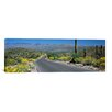 iCanvas Saguaro National Park, Tucson, Pima County, Arizona Photographic Print on Canvas