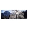 <strong>iCanvasArt</strong> Panoramic Yosemite National Park, California Photographic Print on Canvas