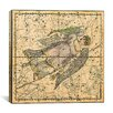 iCanvas Celestial Atlas - Plate 18 (Virgo) by Alexander Jamieson Graphic Art on Canvas in Beige