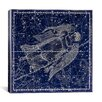 <strong>Celestial Atlas - Plate 18 (Virgo) by Alexander Jamieson Graphic Ar...</strong> by iCanvasArt