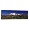 iCanvas Panoramic Wildflowers on Mountains, Mt Rainier, Pierce County, Washington State Photographic Print on Canvas