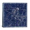 iCanvasArt Celestial Atlas - Plate 21 (Capricornus, Aquarius) by Alexander Jamieson Graphic Art on Canvas in Blue